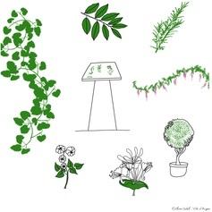 Une balade ludique autour des plantes