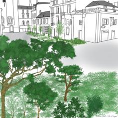 Des forêts urbaines participatives à la méthode Miyawaki