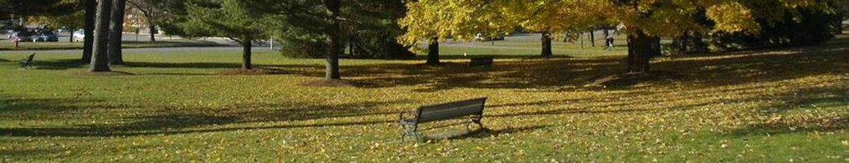 picnic-table3.JPG
