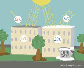 13/ Cool Roof : un geste pour la planète