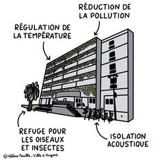 Végétalisation du futur hôtel des associations