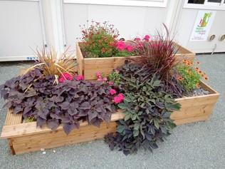 Jardinières d'ornements végétalisés