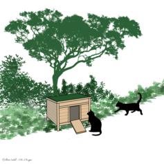 3/ Des abris pour les chats errants stérilisés