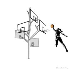 38/ Faire pousser un Arbre à basket à Angers