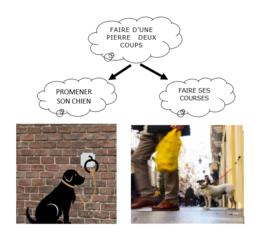 1/ Où garer son chien pendant un tour à l'épicerie ?