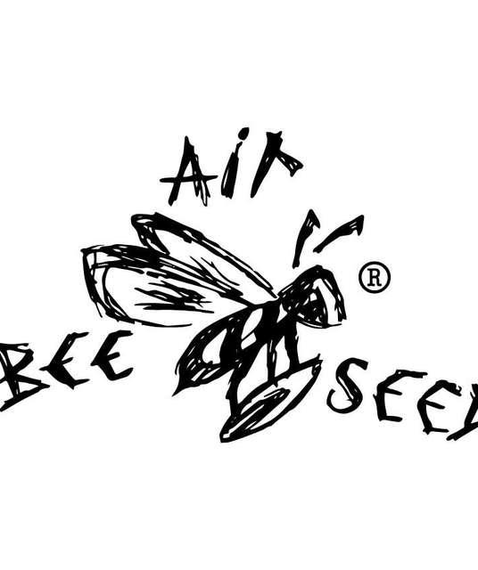 avatar AirBeeSeed
